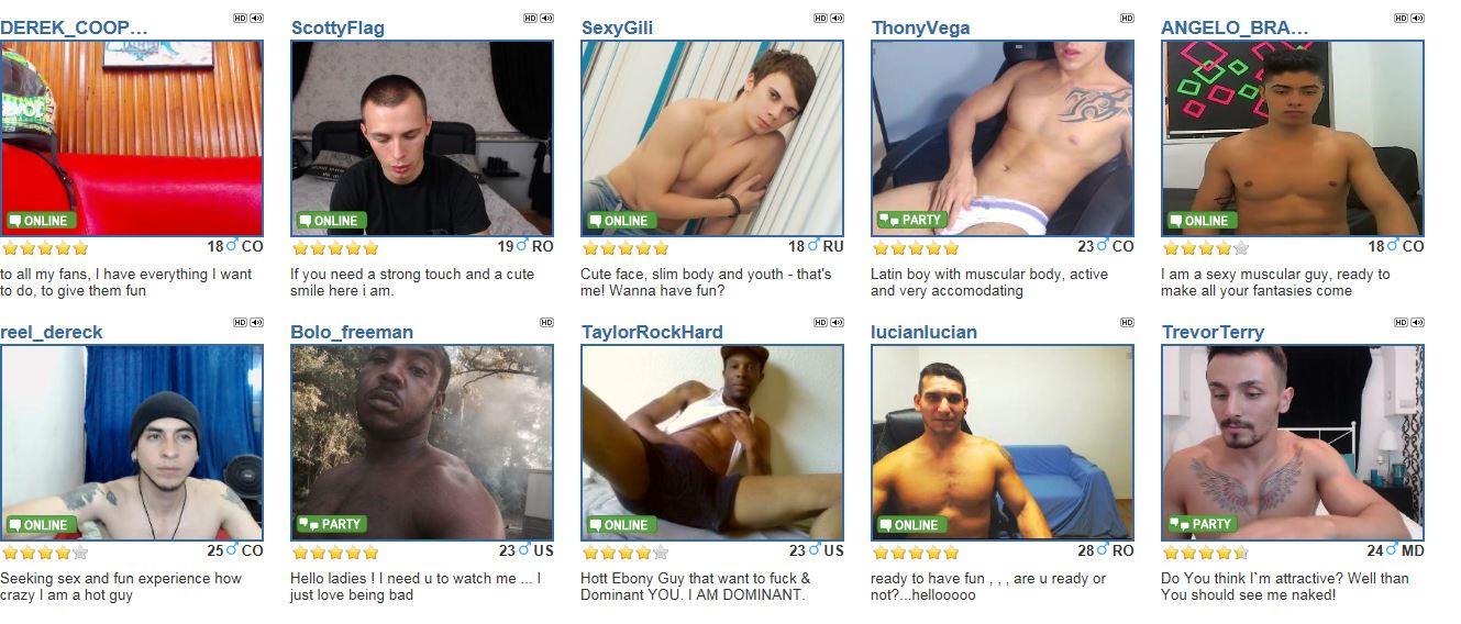 Gaycams free