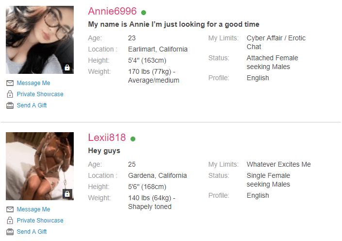 ashley madison profiles